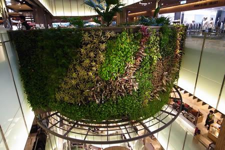 【室内植物种植墙】苏州泰格屋顶绿化科技有限公司