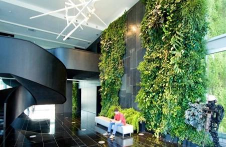 室内植物种植墙